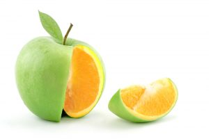 diversity - orange inside apple