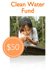 Donate through World Vision