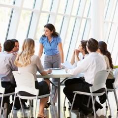 Critical Meeting Facilitation