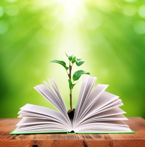 plant growing out of book - learning