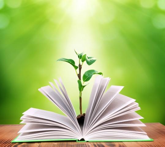 Sustainable Legacies Program