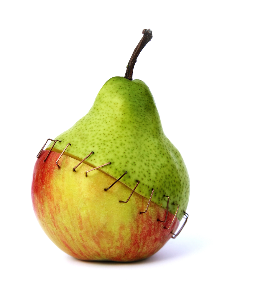 transformation-apple-and-pear-stapled-together