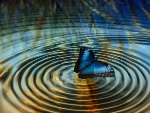 The Butterfly Effect - Are Your Leaders Getting It Wrong?