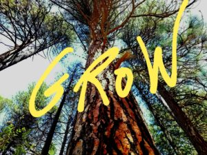 Overcome Failure with a Growth Mindset